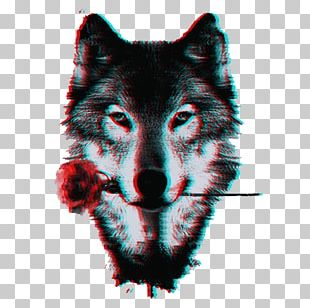 Dog Pack Black Wolf Lone Wolf PNG