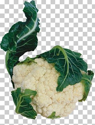 Cauliflower Vegetarian Cuisine Red Cabbage Vegetable Spring Greens PNG