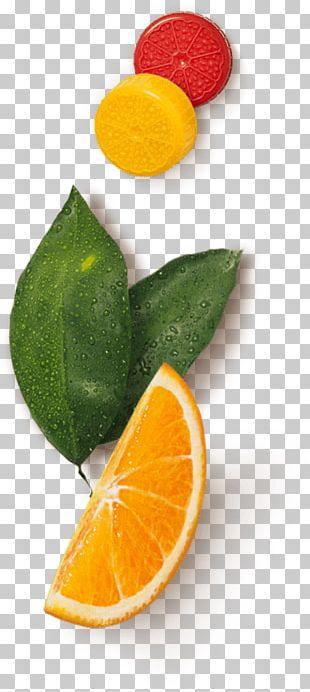 Citrus Lake Wales Florida's Natural Growers Orange Juice Donald Duck PNG