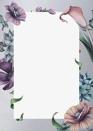 Beautiful Flowers Border PNG