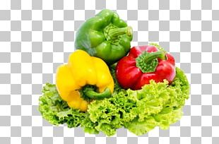 Bell Pepper Lettuce Chili Pepper Vegetable Food PNG