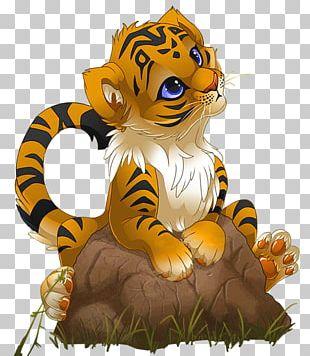 Tiger Cartoon PNG