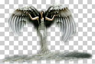 Angel Email PNG