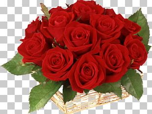 Bella Italia Gift Flower Birthday Valentine's Day PNG