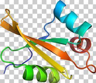 Graphic Design Plant Stem PNG