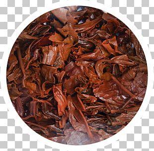 Romeritos Dianhong Brown PNG