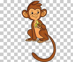 Lion Monkey Primate Human Behavior Cat PNG