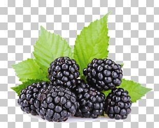 Oil Marmalade Pekmez Red Mulberry Boysenberry PNG