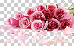 Rose Flower Desktop Stock.xchng Pink PNG