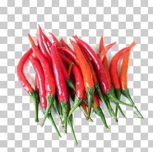 Birds Eye Chili Serrano Pepper Chile De Xe1rbol Piquillo Pepper Cayenne Pepper PNG