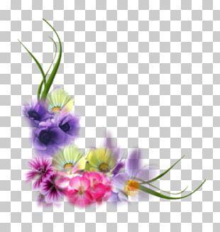 Floral Design Frames Flower .net PNG
