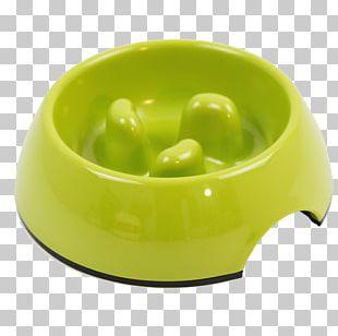 Dog Bowl Cat Pet Eating PNG