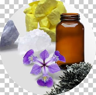 Alternative Health Services Homeopathy Herbalism Medicine Sulfuric Acid PNG