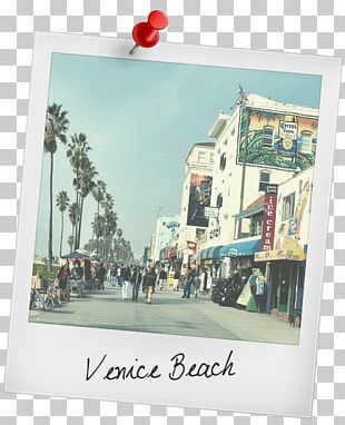 Santa Monica Malibu Long Beach WESTMINSTER DOG PARK Death Valley PNG