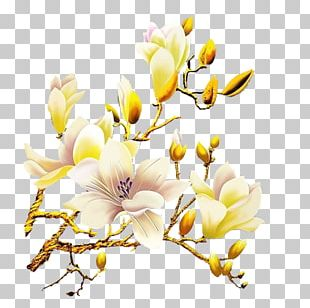 White Flower Orchids PNG