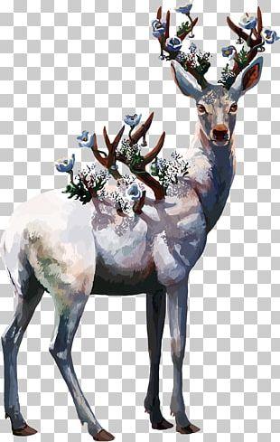 Deer Oil Painting Poster PNG