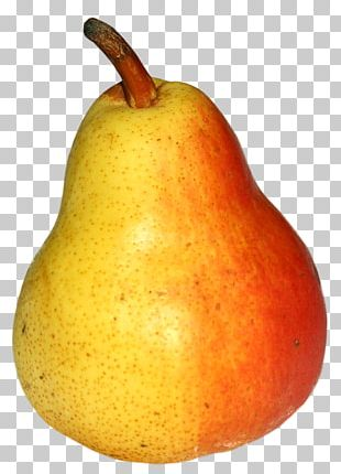 Asian Pear Fruit PNG