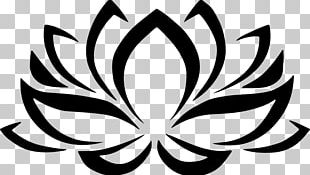 Nelumbo Nucifera Flower Symbol PNG