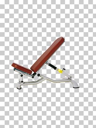 Bench Press Fitness Centre Exercise Equipment Physical Fitness PNG