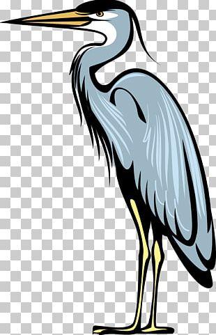 Great Blue Heron Bird Crane Heraldry PNG
