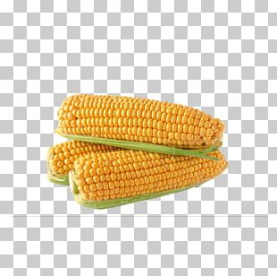 Corn On The Cob Maize Sweet Corn Baby Corn Corncob PNG