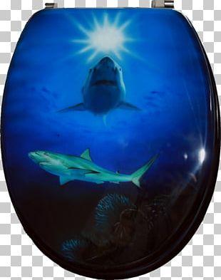 Marine Mammal Toilet & Bidet Seats Marine Biology Cobalt Blue PNG