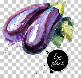 Vegetable Watercolor Painting Eggplant PNG