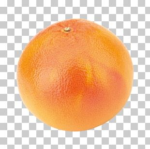 Clementine Tangerine Grapefruit Mandarin Orange Tangelo PNG
