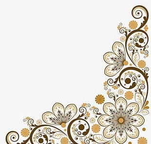 Decoration Borders PNG