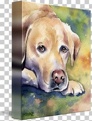 Labrador Retriever Puppy Dog Breed Watercolor Painting PNG