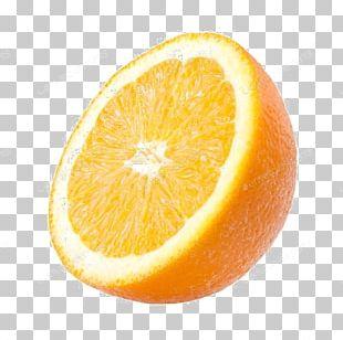 Tangelo Valencia Orange Lemon Portable Network Graphics PNG