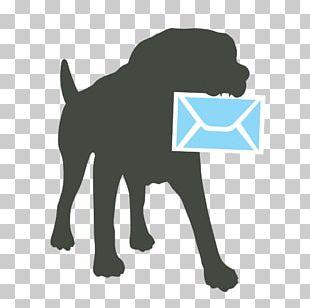 Labrador Retriever Puppy Dog Breed Pit Bull Leash PNG