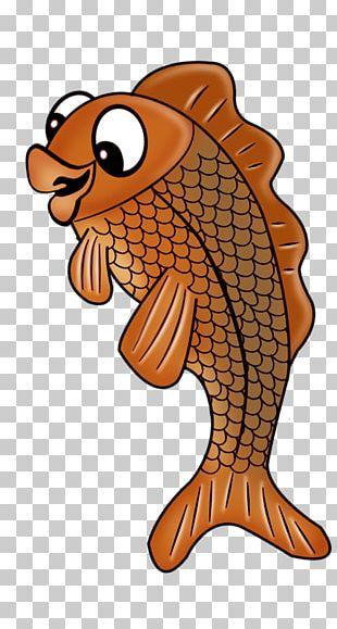 Fish Centerblog Cartoon PNG