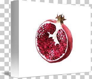 Pomegranate Juice Food Fine Art Painting PNG