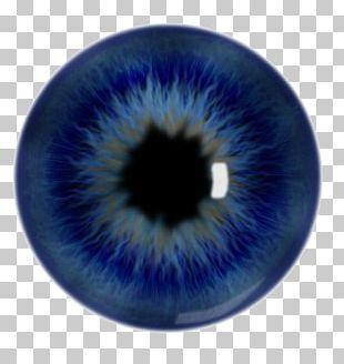 Iris Pupil Human Eye Blue PNG