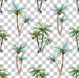 Arecaceae Watercolor Painting Tree Euclidean PNG