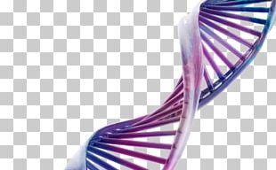 Desktop DNA Three-dimensional Space Science Molecular Biology PNG