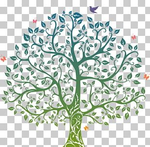 Tree Of Life Drawing PNG
