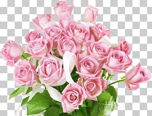 International Women's Day Desktop Pink Flower Bouquet Valentine's Day PNG