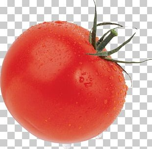 Cherry Tomato Cheese And Onion Pie Icon PNG