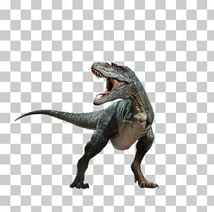 Tyrannosaurus Dinosaur PNG