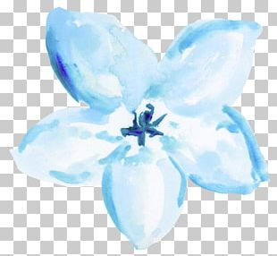 Blue Watercolor: Flowers Watercolor Painting PNG