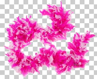 Feather Boa Pink Party PNG