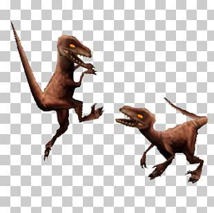 Jurassic Park Builder Jurassic Park III: Park Builder Velociraptor Deinonychus Compsognathus PNG