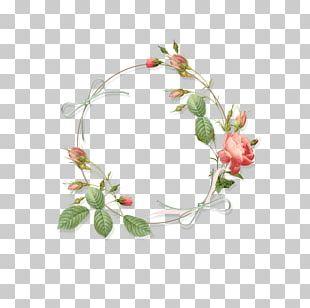 Rose Flower Borders And Frames Floral Design PNG