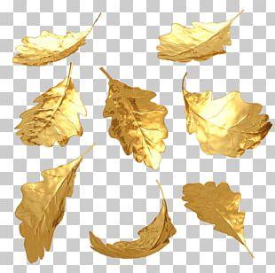 Gold Leaf 3D Computer Graphics PNG