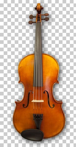 Cello Violin Musical Instruments Viola String Instruments PNG