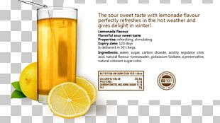 Orange Drink Lemonade Orange Juice PNG