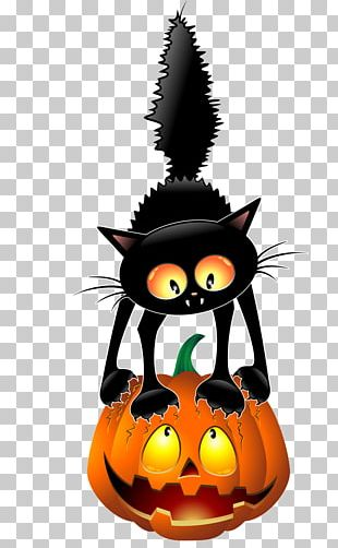 Black Cat Halloween Cartoon PNG