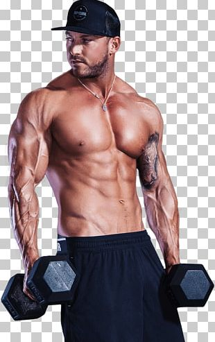 Exercise Muscle Lean Body Mass Weight Training Fitness Centre PNG
